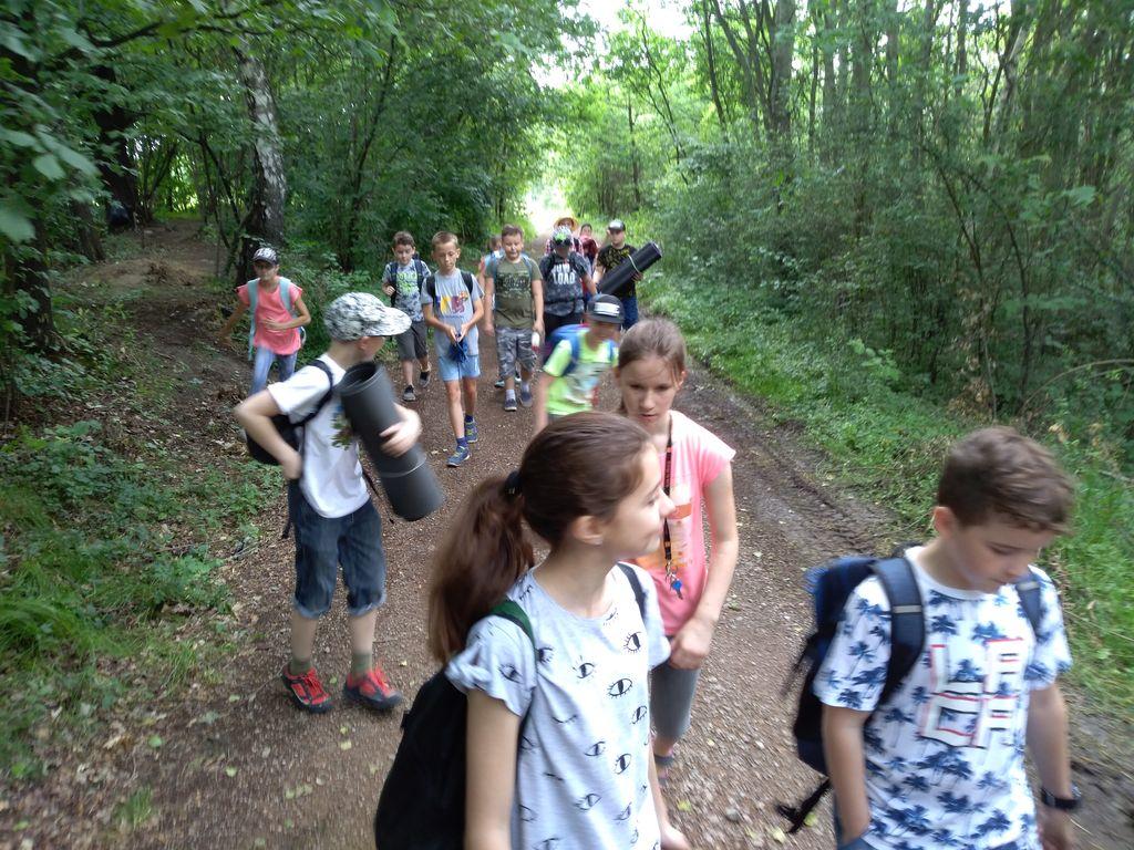 Leśne zajęcia terenowe